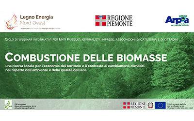 Webinar – Combustione delle Biomasse