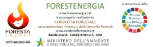 Forestenergia