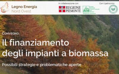Il finanziamento degli impianti a biomassa