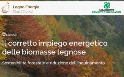 Il corretto impiego energetico delle biomasse legnose