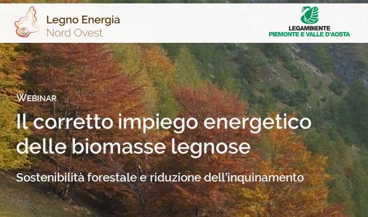 Il corretto impiego energetico delle biomasse legnose | Webinar LENO